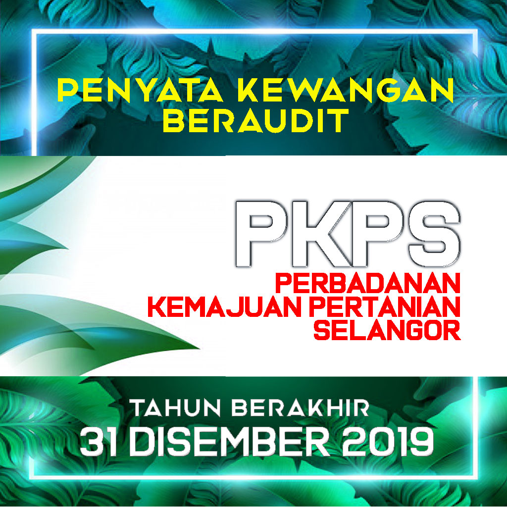 Penyata Kewangan PKPS Bagi Tahun Berakhir 31 Disember 2019